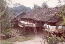 Bornean long houses